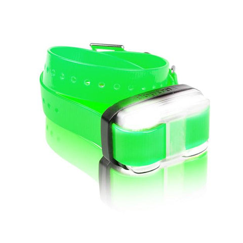 Dogtra EDGE 1 Mile Extra Dog Collar Green