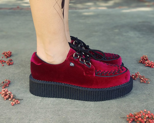 Burgundy Velvet Anarchic Creeper