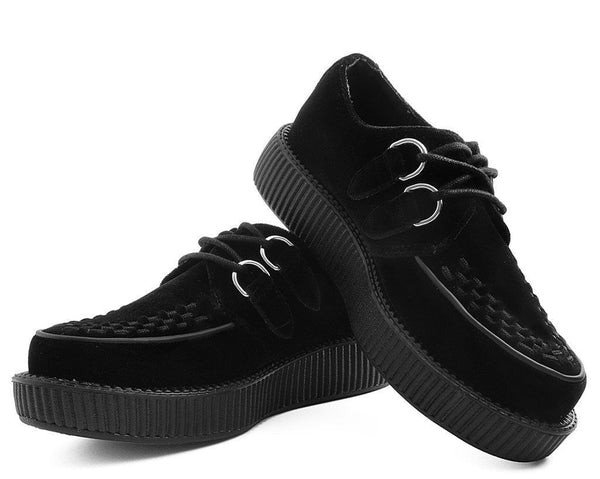 Black Velvet Creeper
