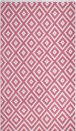 Chanler Indoor/Outdoor PET (Polyester Fiber) Rug in Blush