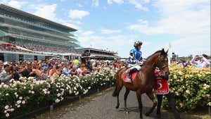SPRING RACING FEVER HITS MALE MANOR