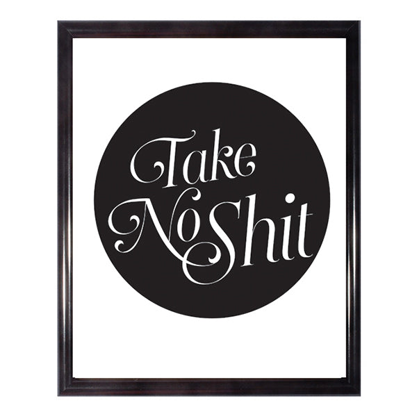 Take No Shit Poster Wall Art