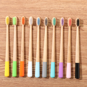 Eco Friendly Toothbrush - The KindNest Collaborative