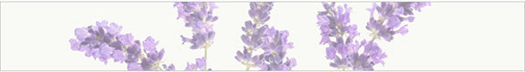 lavender-oil-ingredient