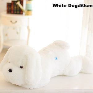 Luminous Dog Plush
