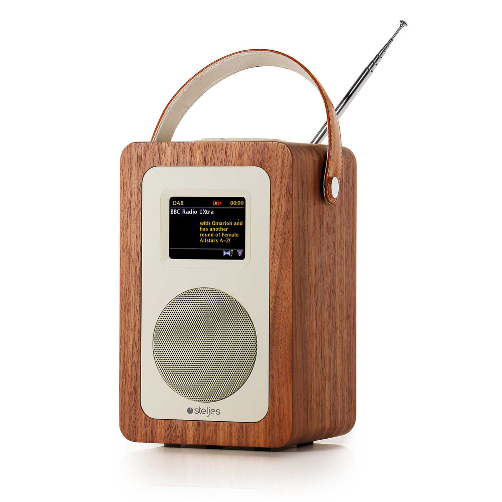Steljes Audio SA60 - DAB+ / FM Streaming Portable Radio [Ships to EU countries ONLY, from UK warehouse]