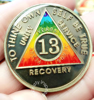 Recovery coins AA 38 Year Bronze Medallion tokens sobriety affirmation birthday