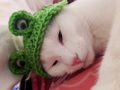 Crochet Cat Frog-hat Costume