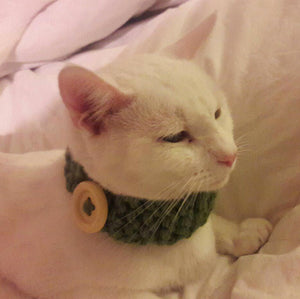 Knitted button cat collar