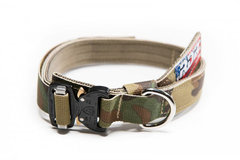 Scout Series Collar (Smaller Dogs)