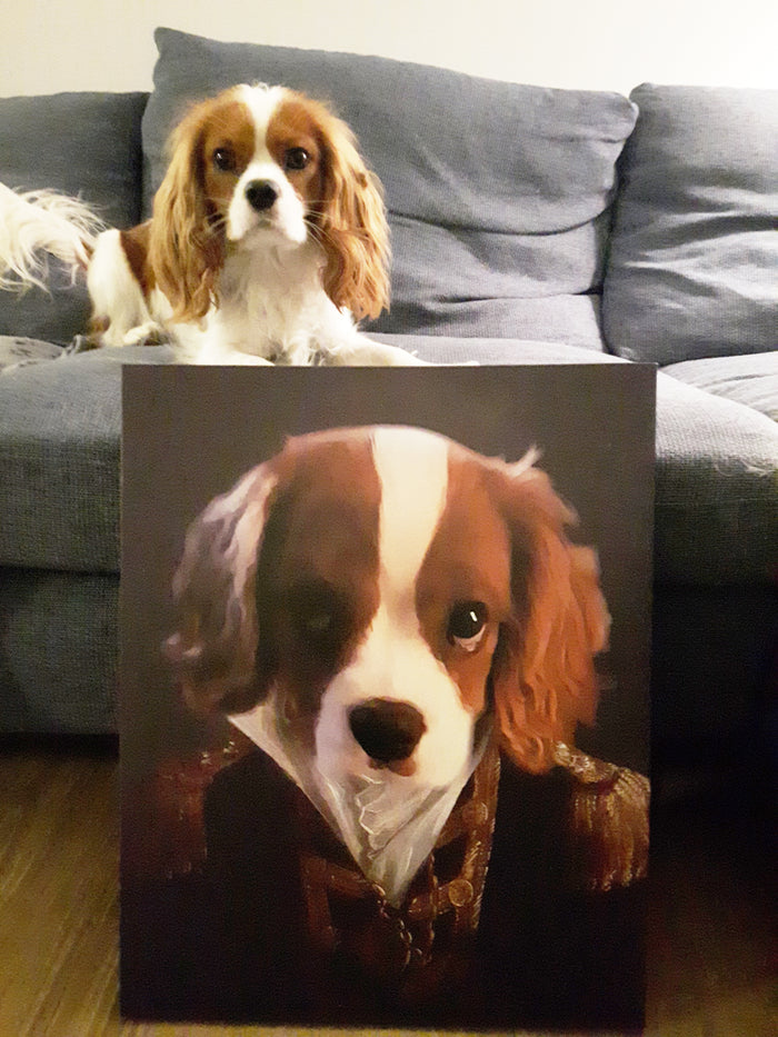 The Admiral - Custom Renaissance Pet Canvas