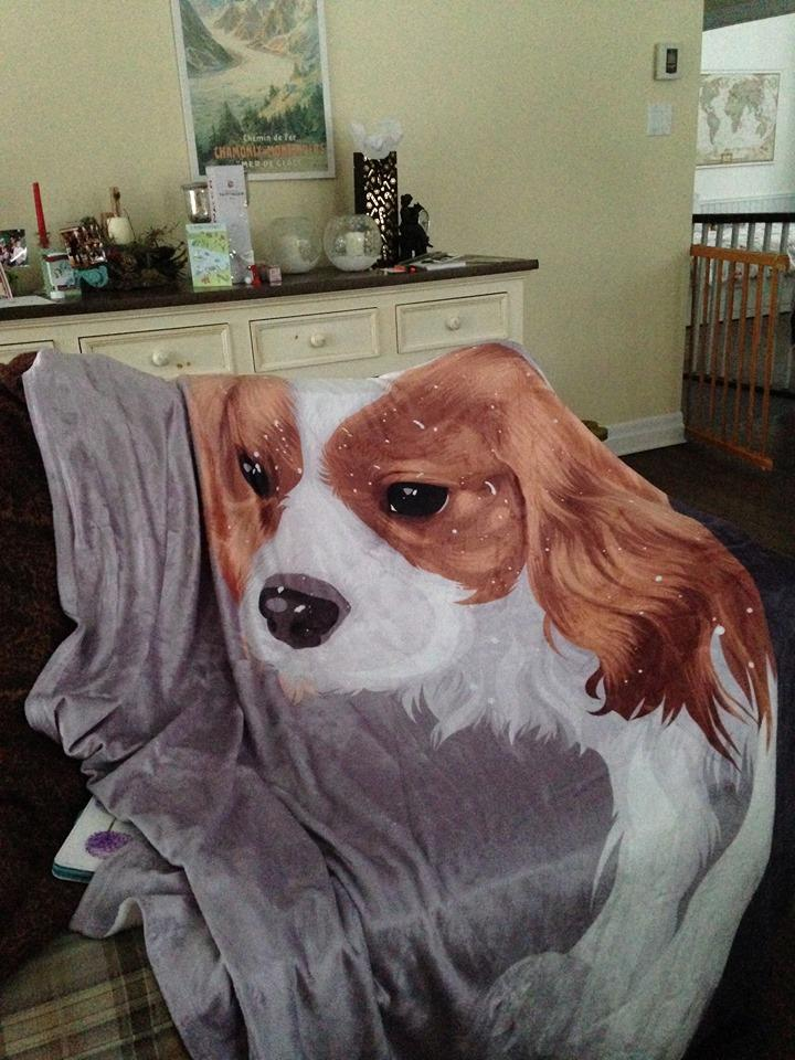 Custom Pet Blanket Home North Legends