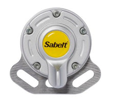 Sabelt Porsche GT3/GT2 6 point Harness