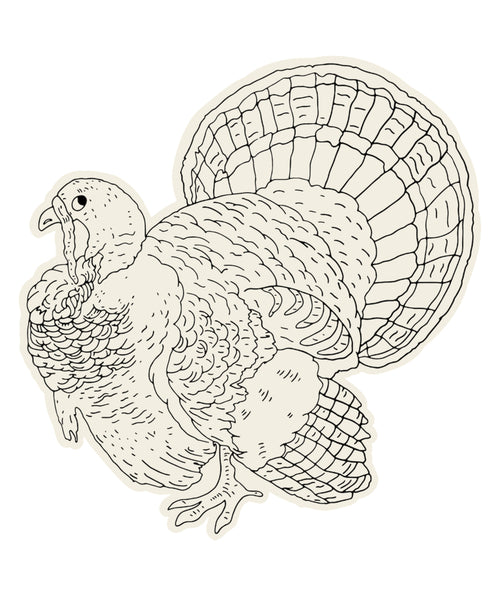Coloring Turkey Die-Cut Placemat
