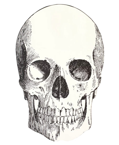 Die Cut Skull Placemat