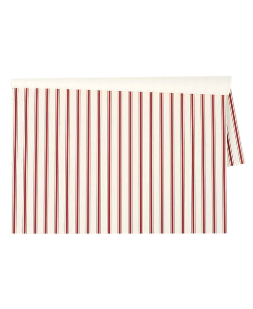 Red Ribbon Stripe Placemat