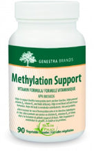 Seroyal: Methylation Support 90 caps