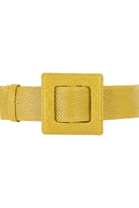 Hamilton Belt_Pitone_Yellow