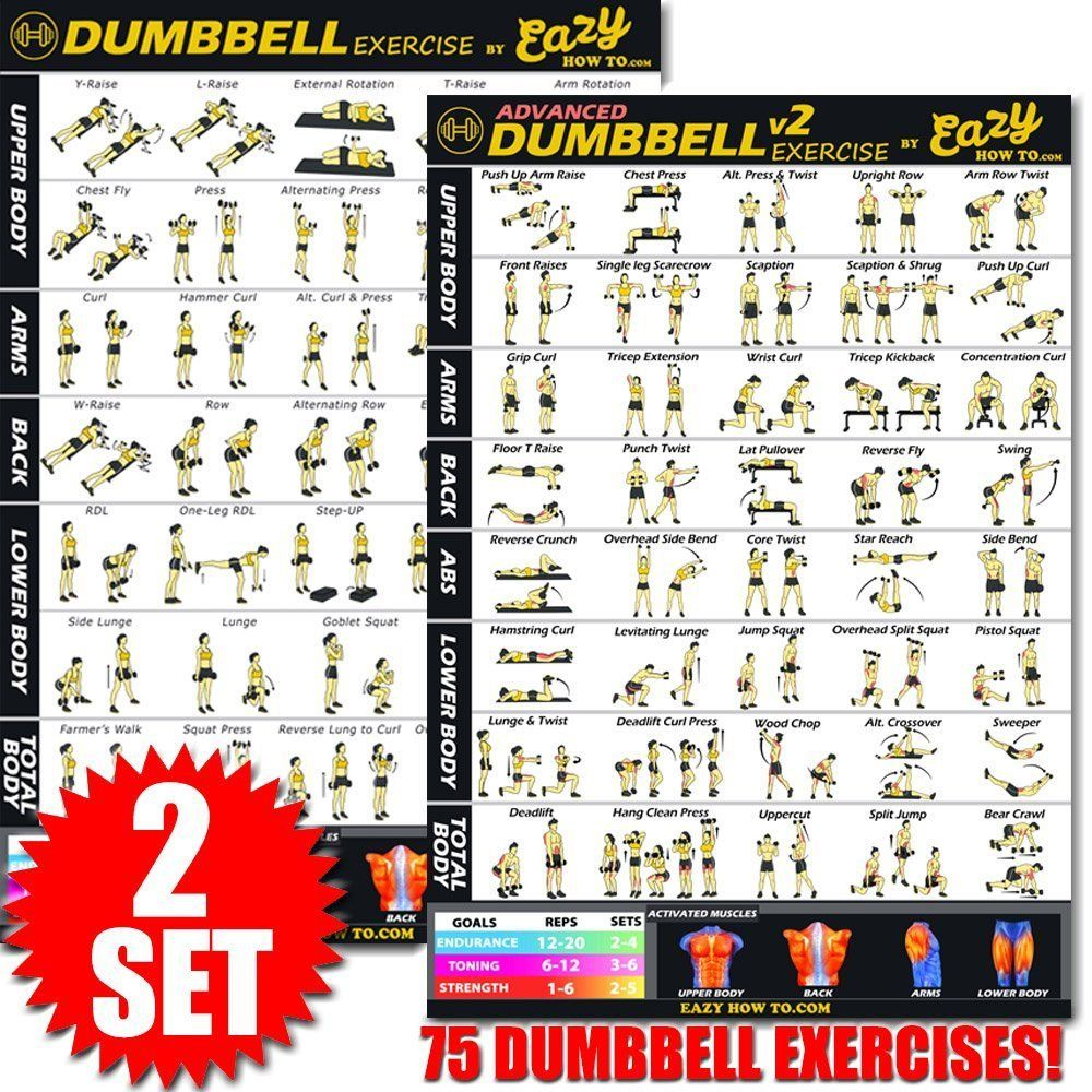 Dumbbell Exercise Workout Banner Poster Complete Set BIG 28 x 20