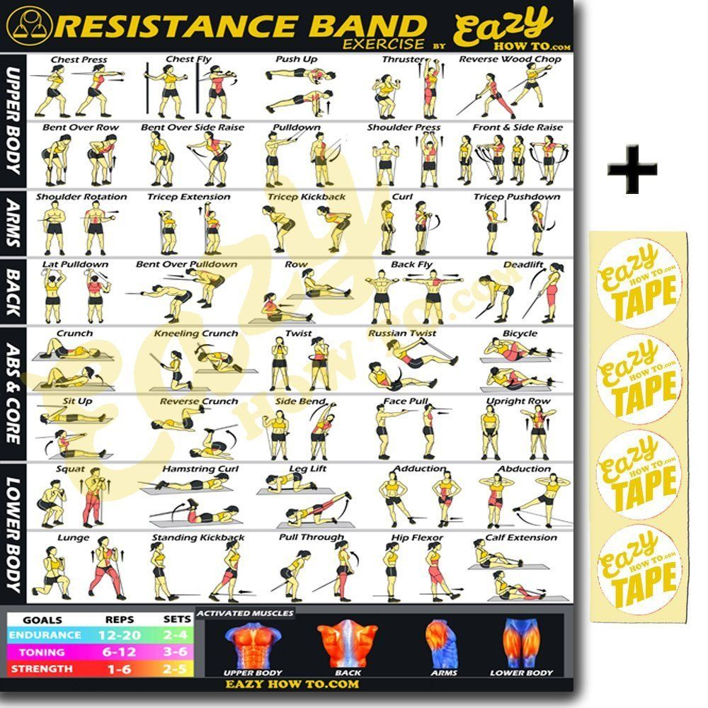 graphic about Printable Resistance Band Exercise Chart named Resistance Band Physical fitness Work out Banner Poster Huge 28 X 20