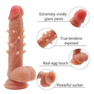 Women Gay Realistic Silicone Barbed Suction Cup Dildo-ZhenDuo Sex Shop