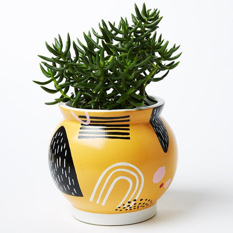 Magic Mountains Mustard Pot