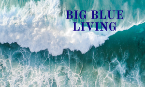BIG BLUE LIVING