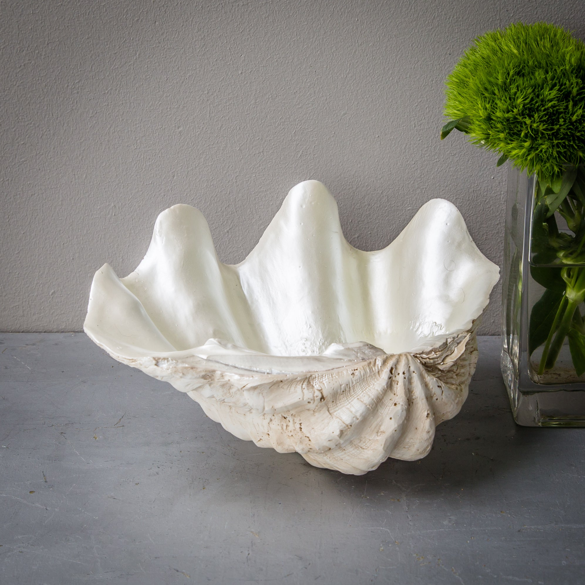 24cm Faux Giant Clam - Natural Base with Pearl Interior