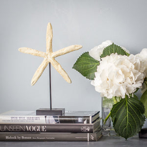 Star Fish on a stand and base