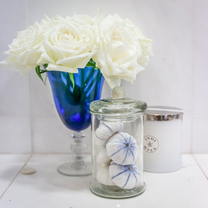 Small Glass Jar with 6 Faux Blue and White Urchins
