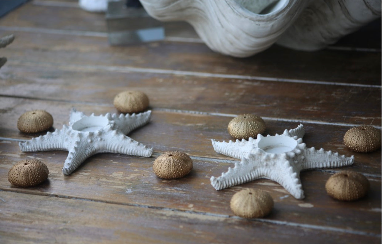 Faux resin stone Star Fish tealight holder. - Special  Christmas  15%  Discount  at checkout