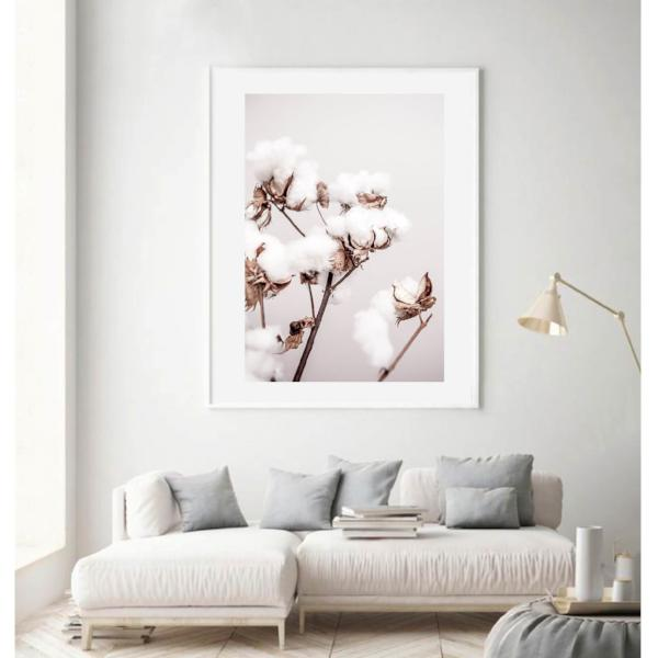 Cotton Plant Photographic Print | Various sizes | Free Shipping | My House Loves