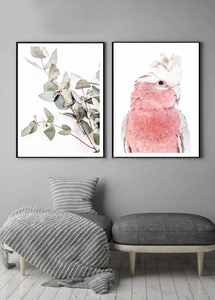 Love your space Iggy Pink Galah photographic print | Various sizes | The Home Maven