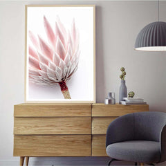 King Protea I - Photographic Print
