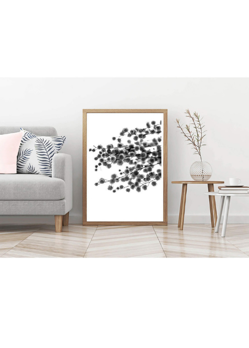 Australian Wattle Black and white photographic print - $35 - $119 |My House Loves