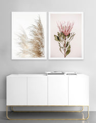 Pampas grass blushing king photographic print | Various sizes | My House Loves