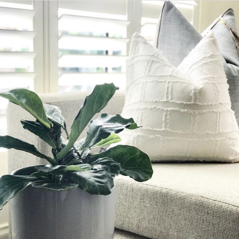 Eddie bedu square white cushion | The Home Maven