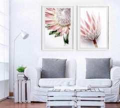 King Protea I Photographic Print -$35 - $119 |The Home Maven
