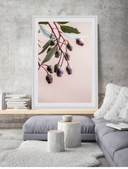 Love your space Gumnuts Photographic Print - $35 - $119 |The Home Maven