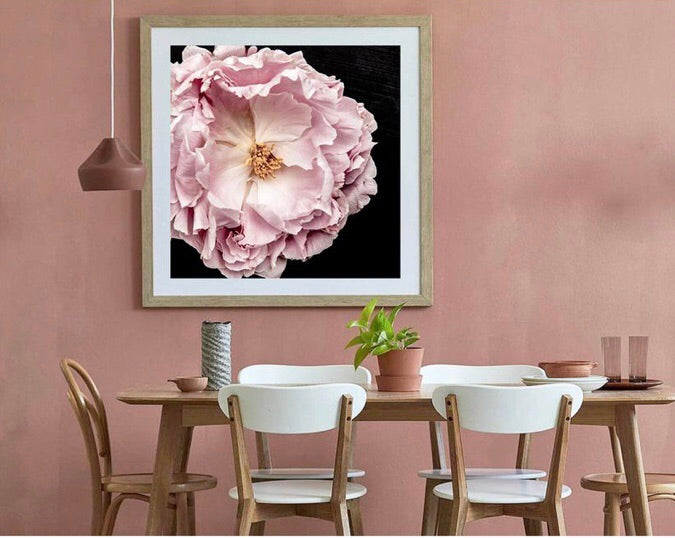 Full Bloom Peony II (Square) - Photographic Print - $39.95 - $159.95 | My House Loves