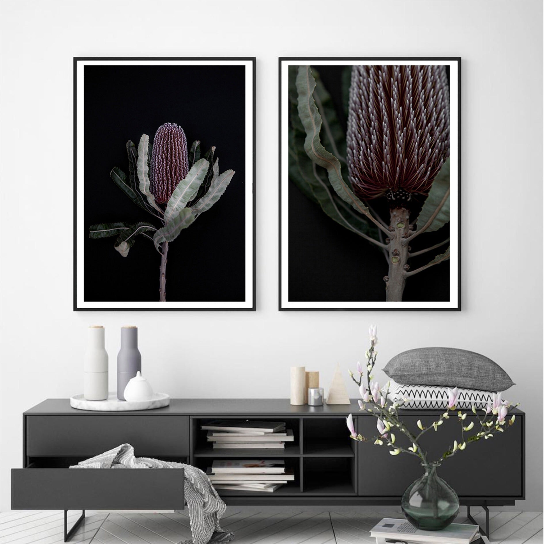 Dark Banksia I - Photographic Print - $39.95 - $129.95 | My House Loves