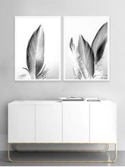 Feathers I - Wall Art Photographic Print - $39.95-$129.95 | My House Loves