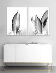 Love your space Feather II photographic Print - $35 - $119  |The Home Maven
