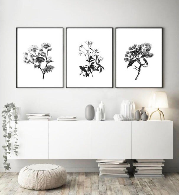 Love your space Botanical II Sketch Print - $35 - $85 |The Home Maven
