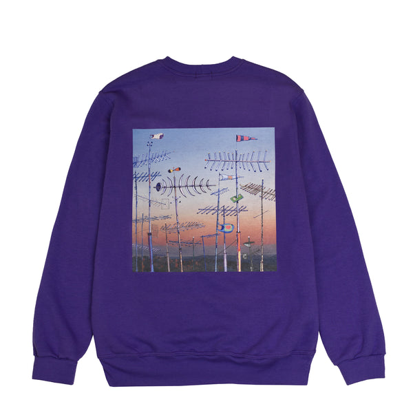 Lanee Clothing Streetwear LANEE X JAMER PURPLE CREWNECK LOOSE FIT