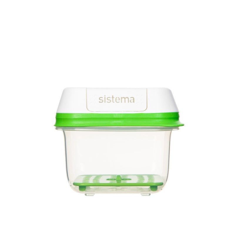 FreshWorks produce container small square