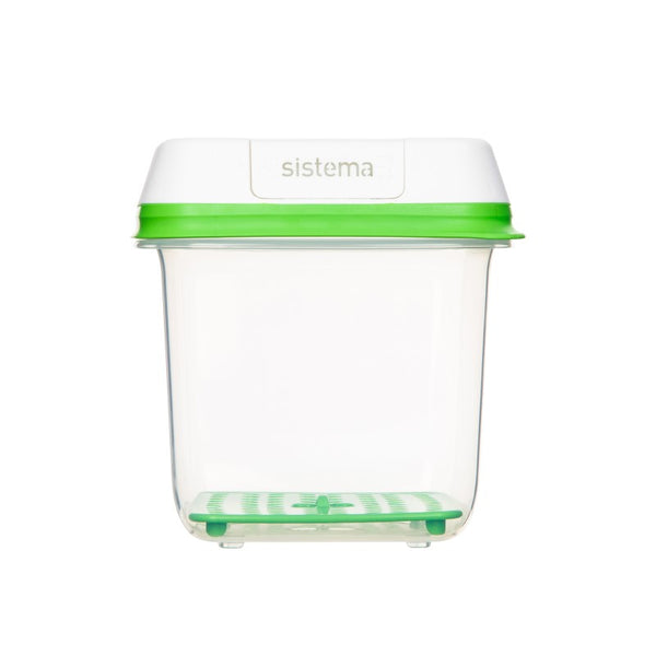 FreshWorks produce container medium square