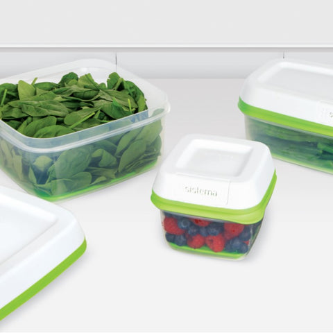 FreshWorks produce container long rectangle