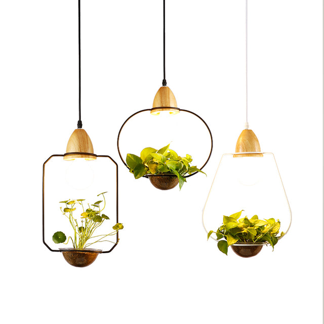 Metal frame with glass planter pendant light