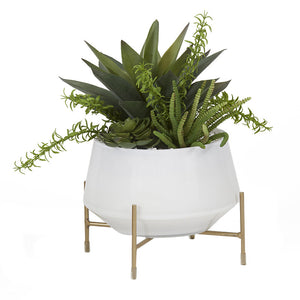 ALOE AND SUCCULENTS IN WHITE GLASS BOWL WITH STAND